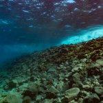 Photo of Abyss Fuerteventura