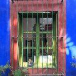 Bilde fra Coyoacan