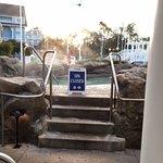 Foto de Disney's Yacht Club Resort