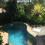 Our very own plunge pool