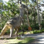 One of the 'dinosaurs' in the former Bongoland