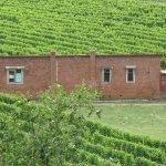 ภาพถ่ายของ Mission Estate Winery