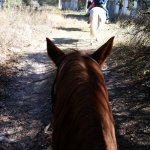 A trail ride with Jim.
