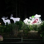 Winter wonderland Sherwood Forest centre parcs