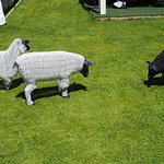 Sheep made from beads