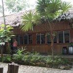 Foto de Jungle Lodge