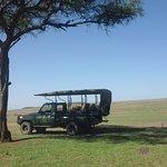Picnicking in the Maasai Mara!