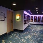 Nationalmannschaftsgalerie auf der 7. Etage