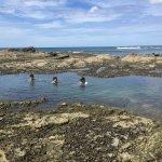 En marea baja se forman piscinas en el arrecife, delicioso baño.
