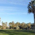 le parc a cote de Port Canto...