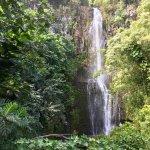 Foto de Mahalo Tours