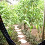 Vista al Jardin, al frente de la habitación con hamacas.