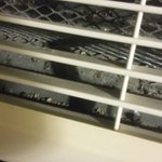AC/Heater vents bugs and dirt blowing into room