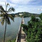 Photo de Grand Bahia Principe Cayacoa