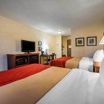Foto de SureStay Plus Hotel by Best Western Buffalo