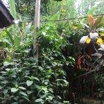 Photo of Poramba Hostel
