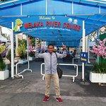 Photo of Melaka River Cruise
