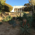 La villa Eilenroc, vue de son jardin de cactées