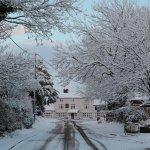 winter Haughmond