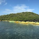 Photo de Paddles Snorkel and Kayak Eco Adventure