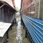 Sea bed beneath the stilt houses
