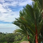 TikiVillas Rainforest Lodge & Spa Foto