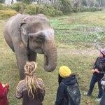 Natur- og dyrelivsturer