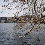 Lugano vista dal parco