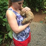 Carla from the Sloth Sanctuary <3