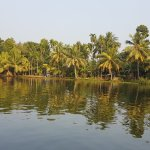 Photo of Bamboo Lagoon Backwater Front Resort