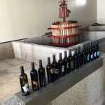Winery tour