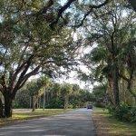 Washington Oaks Gardens State Park Foto