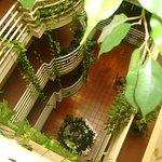 Foto de Hotel Pantanha Apartamentos
