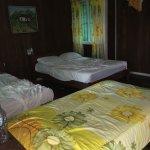 Photo de La Baula Lodge