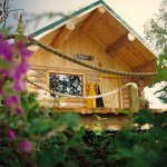 one of our beautiful cabins at Orca Lodge