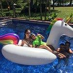 piscina , campo y playa