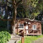 Maison Cottage - A romantic escape