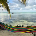Photo de Glover's Reef Marine Reserve