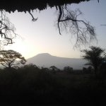 Kilimanjaro from my tent!