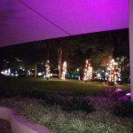 Photo of Pestana Casino Park