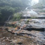 Katoomba Falls Tourist Park Photo