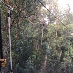 Canopy tour - up in the trees, wear sleeves - the wind is cold!