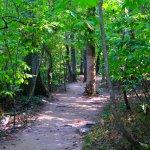 pretty easy hiking trails