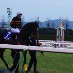 Photo of Kyoto Horse Racetrack