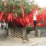 Photo of Shanghai Qibao Town