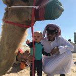 Zdjęcie Qatar Inbound Tours - Private Day Tours
