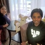 My twins in their side of adjoining rooms-(housekeeping made a bunny out of towels)