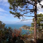 Photo of Hike the Punta Manara