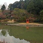 浄土式庭園のかなめである池