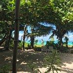 Foto de Windsong Beach Restaurant
